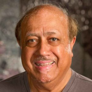 Professor Ahsan Kareem