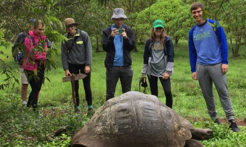 Students observing a tortoise during the Galapagos Islands field trip