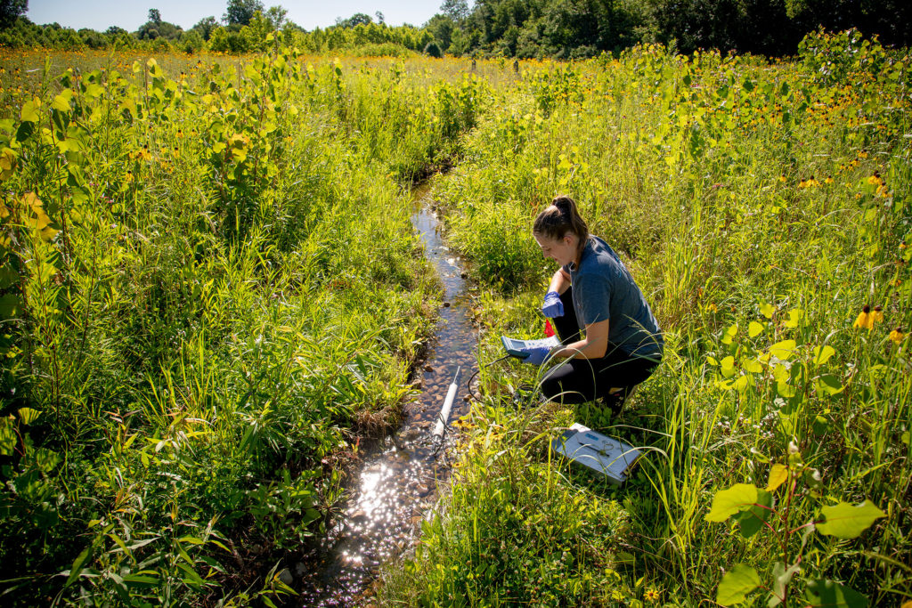 ND student tests water at the Notre Dame Linked Experimental Ecosystem Facility, or ND-LEEF.