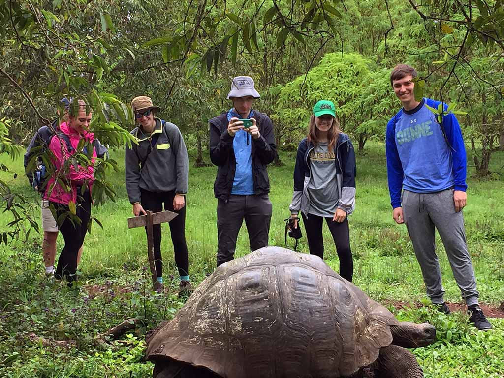 Students observe tortoise on the Galapagos Island field trip